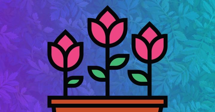 Botany, KPIs, &Content