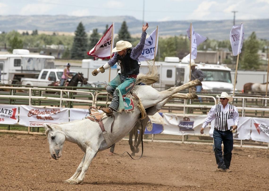 cowboys-1248620_1280